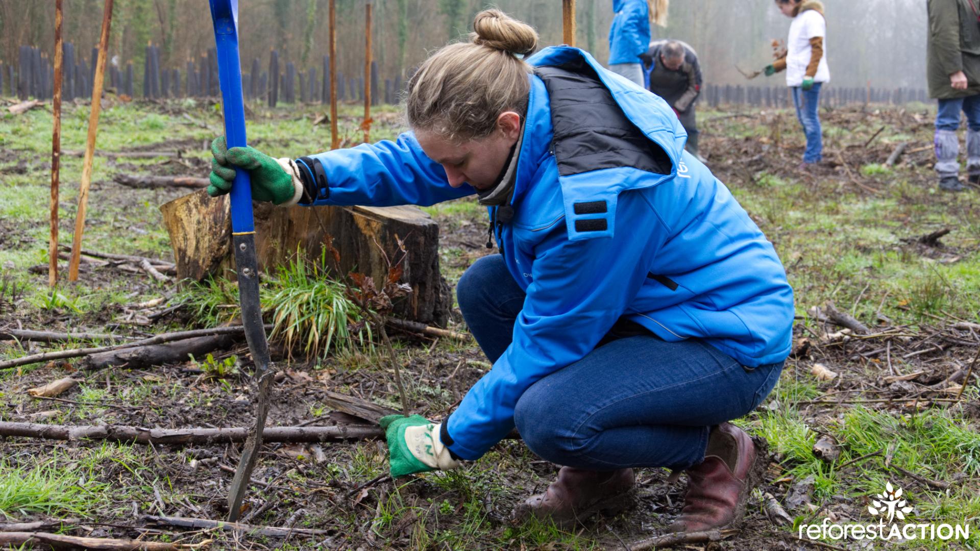 Reforest action plante des arbres à travers le monde.