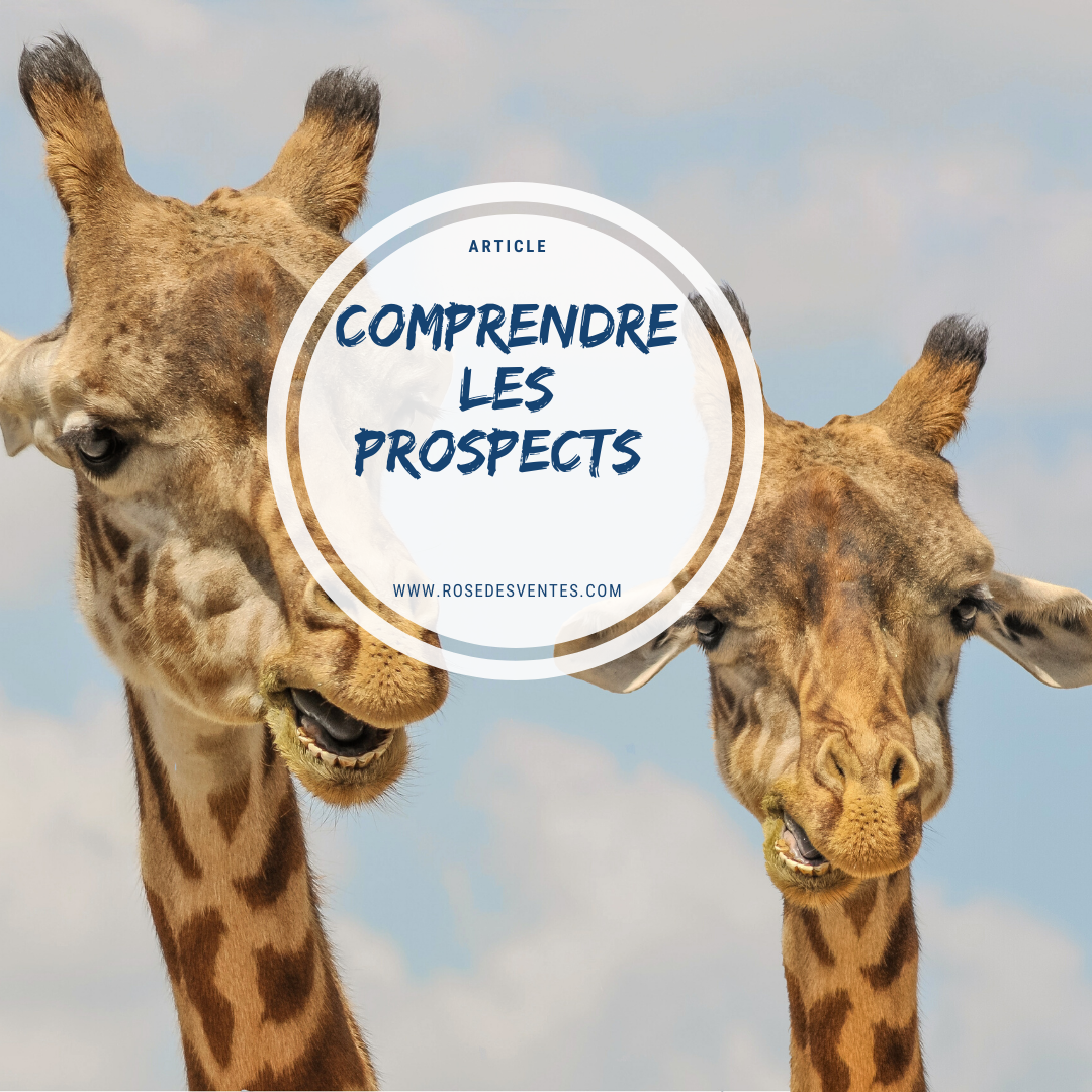 Comment comprendre les prospects?