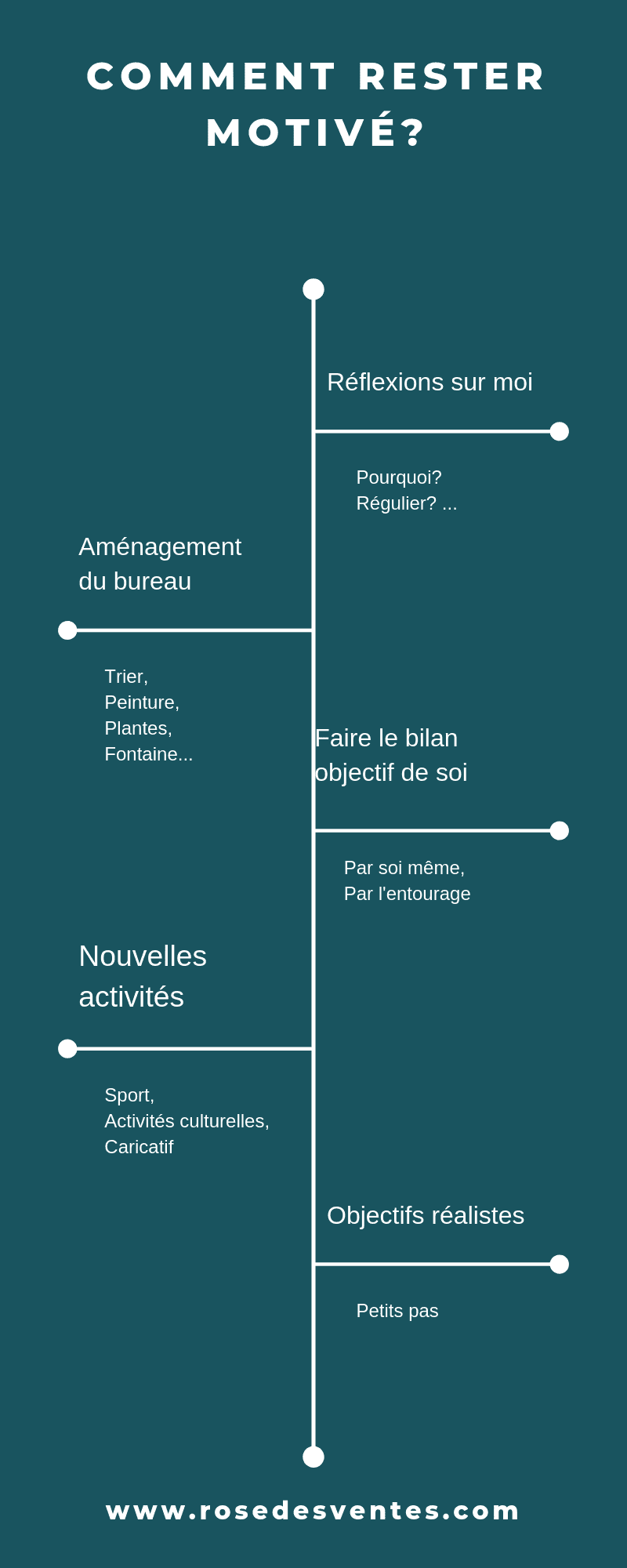 Infographie motivation La Rose Des Ventes