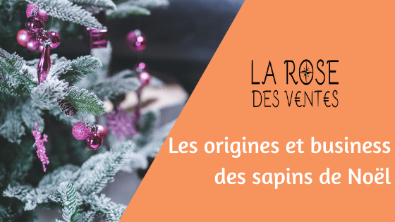 Les origines et business des sapins de Noël